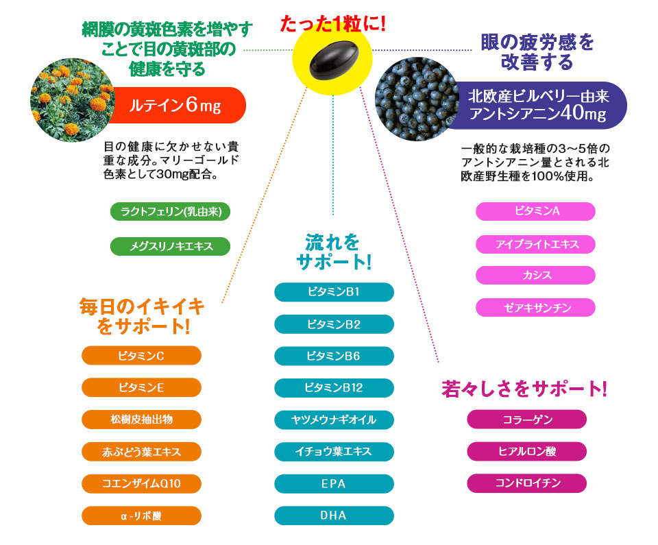 25種類の栄養素材